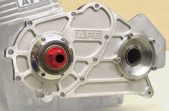 APE combined bearing support and alternator replacement cover